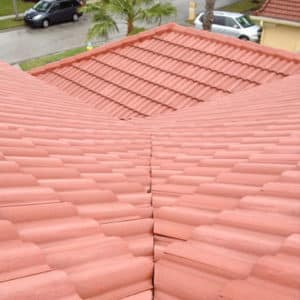 Non Pressure Washing Roof Cleaning in Tampa