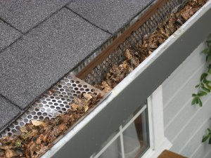 Gutter with debris and dry leaves