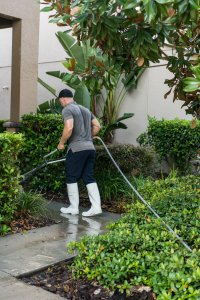 pressure washer in tampa fl
