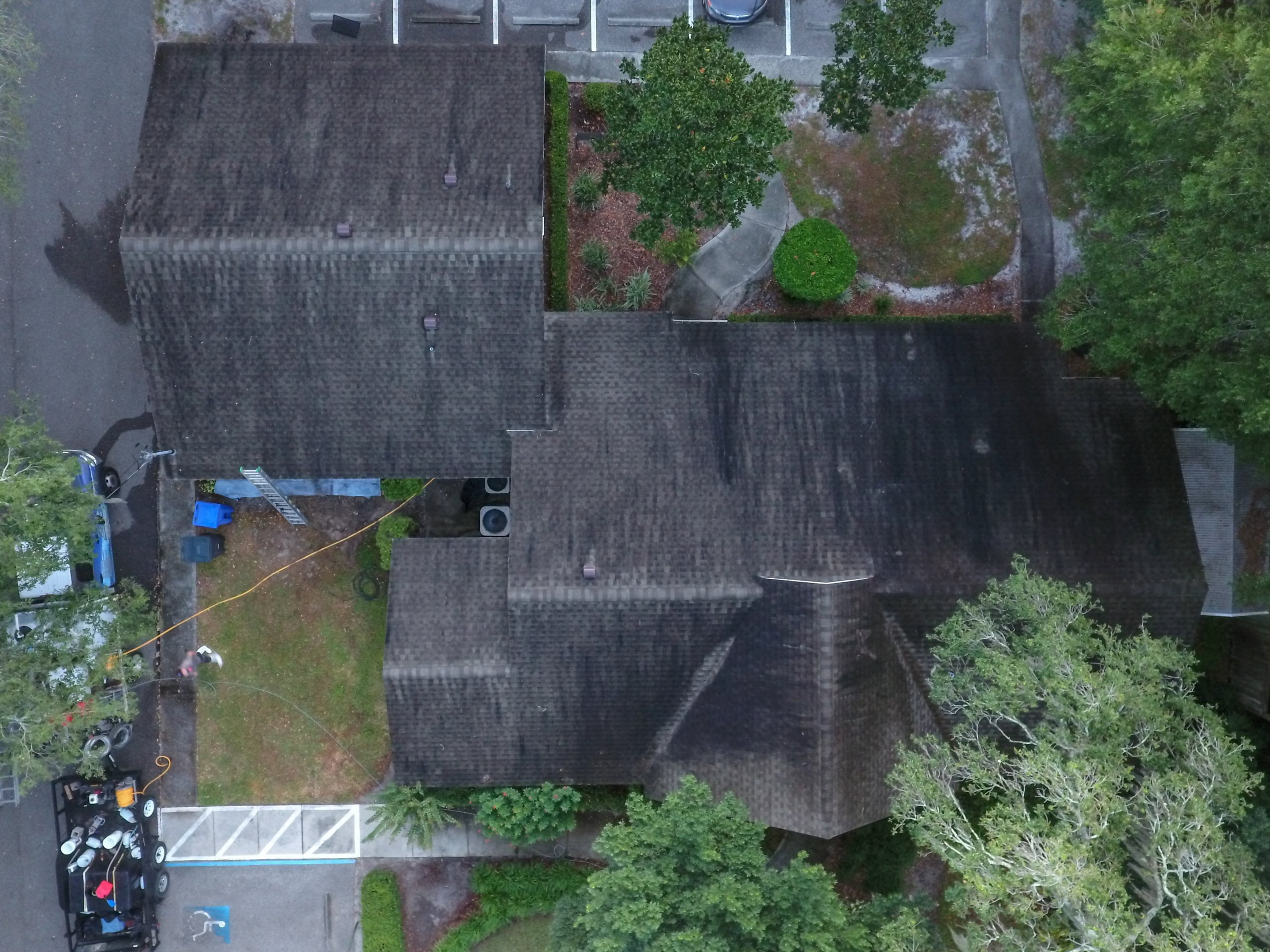 nonpressure roof cleaning tampa fl